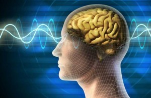 brain-interface