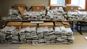 021913- Canton, MA:  , Pic shows pot confiscated. Thomas Jin Kim, 30 of 255 McKibben St. Apt. 212 Brooklyn, NY  took possession of the first half of the nearly 300 lb. overall delivery.  He was subsequently arrested and charged with Trafficking in Marijuana. Based on the weight and quality of the product, the street value of the marijuana would yield close to $1,000,000.  The suspect was held on $1,000,000 bail and was arraigned in Stoughton District Court (photo courtesy of Canton PD)