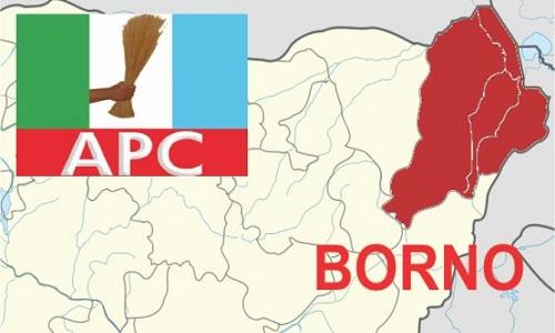 APC-Borno