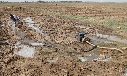 Dry-Season-Farming
