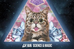 Internet-sensation-Lil-Bub-cat-to-release-first-album-Science-Magic
