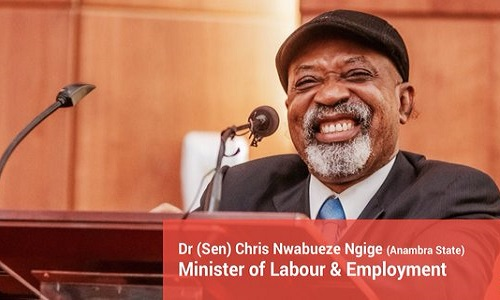 Minister of Labour and Employment-Chris Ngige