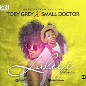 Toby-Grey-Laleyi-Night-Train-ART-Small-Doctor-300x300