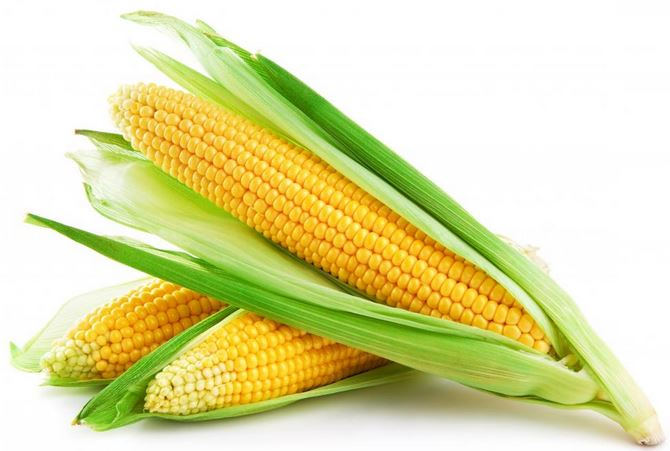 List Of Food With Corn In It