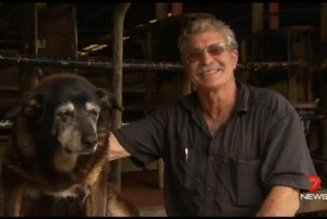 Dog-thought-to-be-worlds-oldest-dies-at-30-years-old