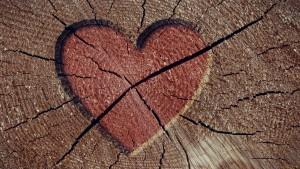 Heartbreak creative timber Wallpapers HD 1280x720