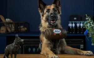 dog-serves-beer-london0516
