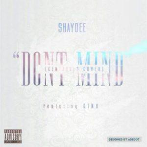 Shaydee-Dont-Mind-ART-300x300