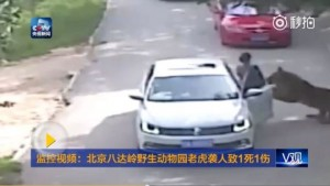 CCTV footage showing the attack