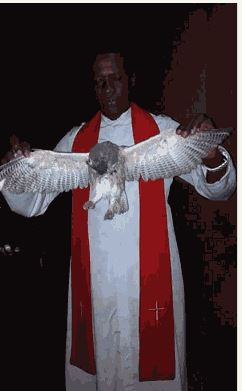 Witch Turns To Owl At Enugu Crusade, Falls And Dies [PHOTOS]