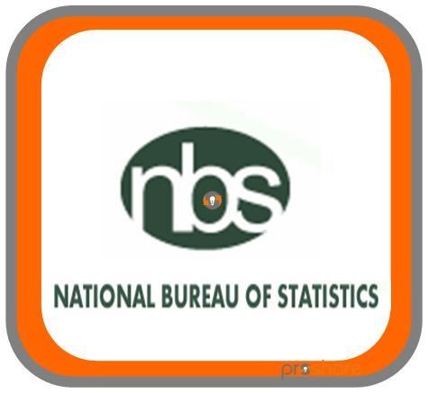 National Bureau of Statistics (NBS)