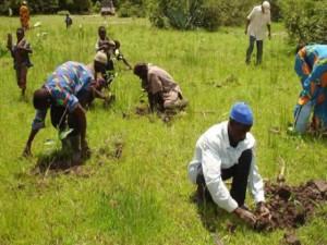 The-President-Etche-Farmers-Cooperative-Union-Mr.-Godwin-Akandu