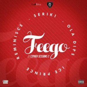 feego-300x300
