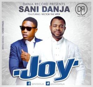 sani-danja-x-vector-joy-artwork-300x281