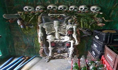 human-skeletal-remains