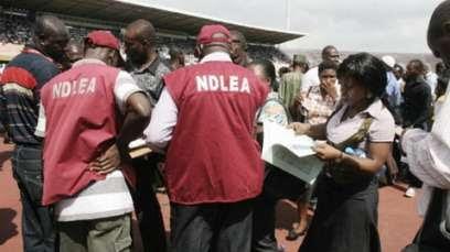 ndlea2