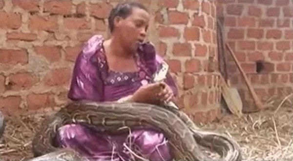 Image result for woman gives birth to snake
