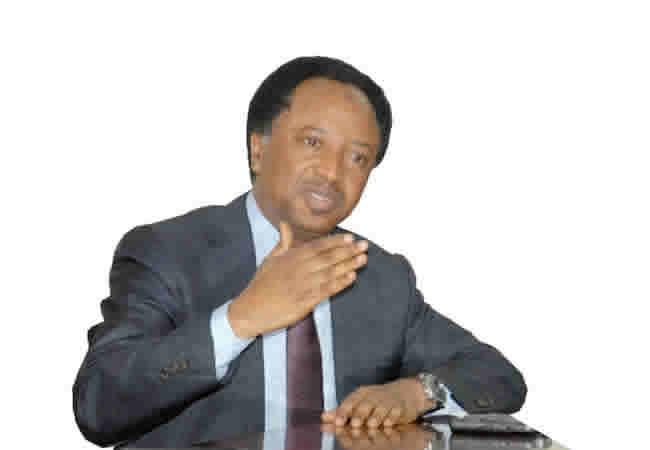 Planned Attack On Buhari In Japan Falls Short Of Civility: Shehu Sani Tells Nnamdi Kanu