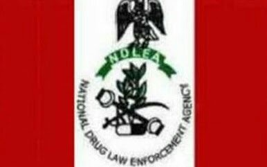 NDLEA Destroys Drugs Worth N10b In Edo