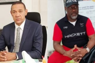 How Dino Melaye brought out a horsewhip to flog Ben Bruce's bill to an early grave