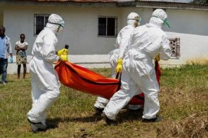 Ebola: Nigerian doctor who took on the deadly task of cremating Sawyer's corpse cries out more than four years later