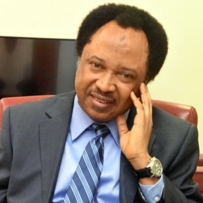 Marijuana will benefit your afro too - Sowore comes for Senator Sani