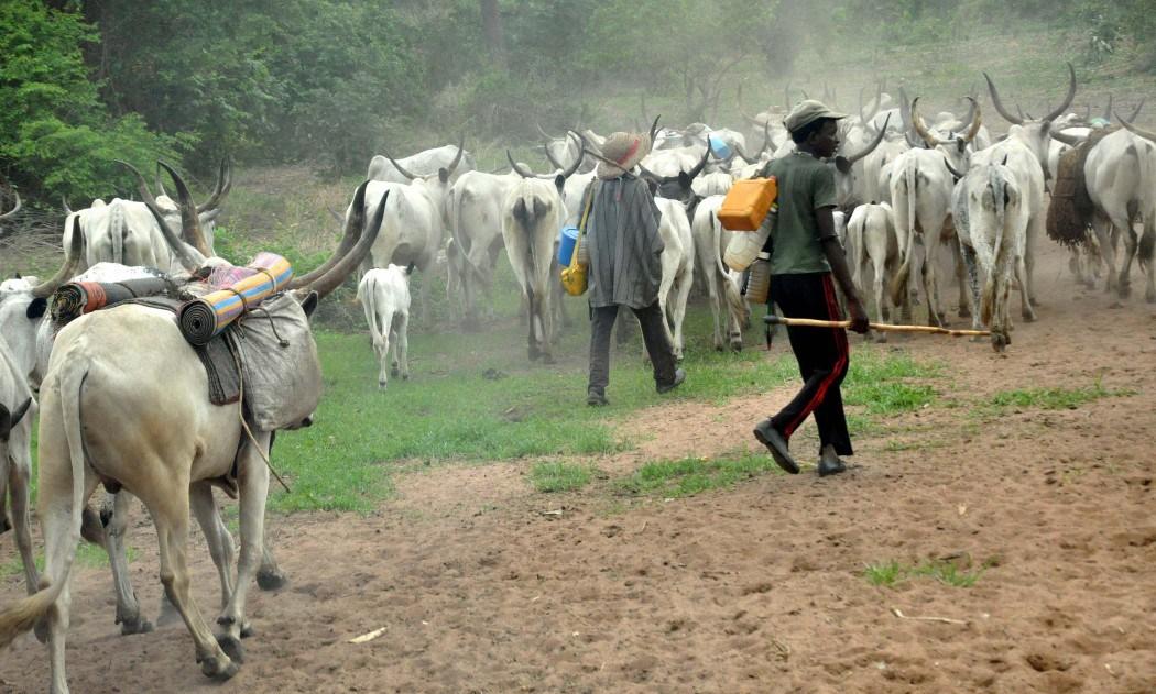 Address herdsmen activities or expect retaliation - Aare Onakakanfo Council