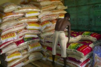 Nigerians Now Enjoy Fresh, Healthy Rice Since Border Closure: Rice Farmers