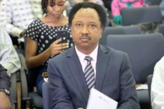 Shehu Sani Condemns Persecution Of Musicians Who Criticise Government