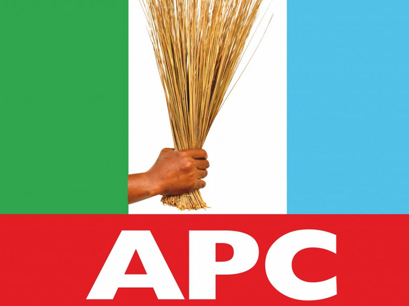 23927 - We Made No Budget For Thugs In 2019 Election — APC Replies Wadume