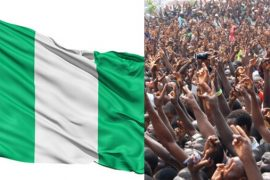 Nigeria's Population Hit 201 Million