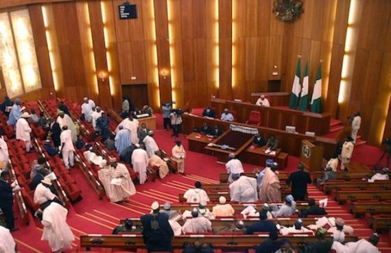 Bill to make June 12 Democracy Day passed by Senate
