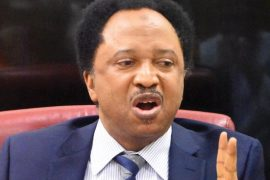 shehu sanni slams governors who don't stay in their states