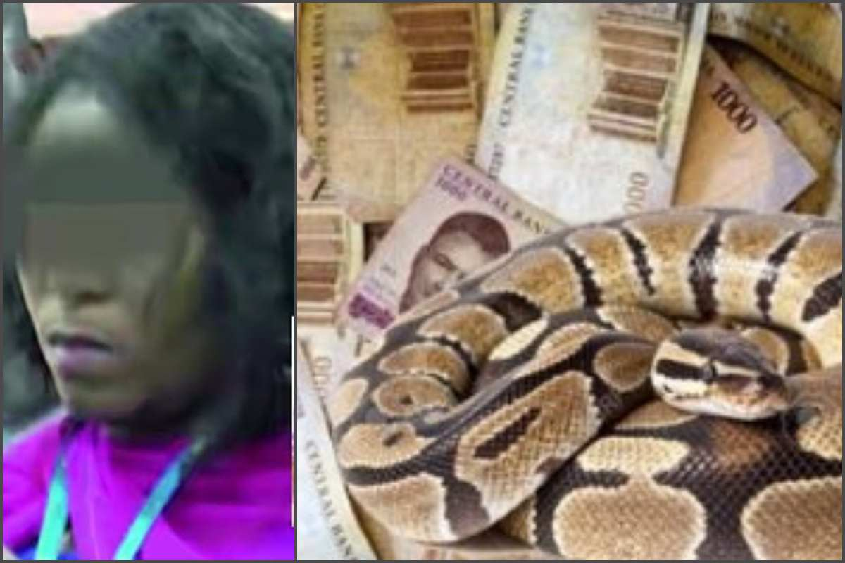 1 51 - EFCC finally arraigns woman, others who claimed a snake swallowed JAMB's N35m