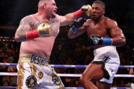 ''Anthony Joshua Would Bounce Back'' - Fani Kayode