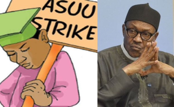'President Buhari's Education Policy Is Criminal' - ASUU
