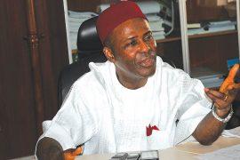Ministerial Nominee, Ogbonnaya Onu