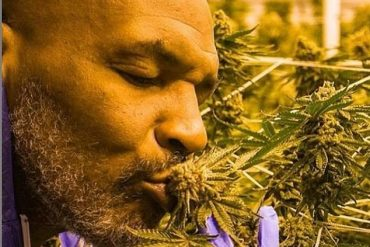 Mike Tyson Smokes ₦14m, Sells ₦181m Worth Of Weed Monthly