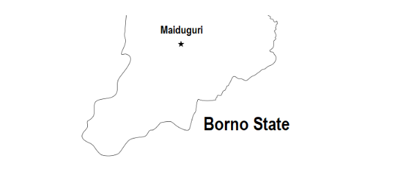 Female Suicide Bombers Strike In Borno, Kill Two