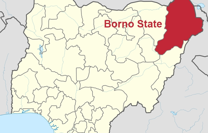 Boko Haram Slaughters 43 Farmers In Borno, Destroys Rice Farms