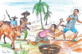 Herders/farmers clash