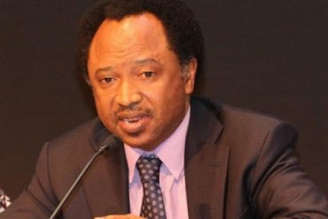 I'm Not Done Yet, I Will Be Back In 2023: Shehu Sani