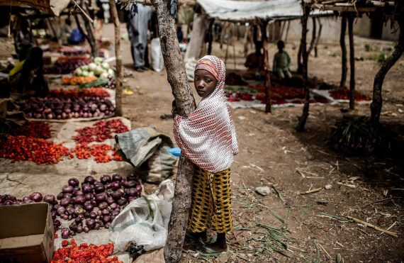 Border Closure: Prices Of Frozen Foods, Rice, Tomatoes, Groundnut Oil Skyrocket...Few Weeks To Christmas