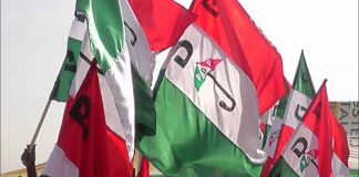 PDP Flags