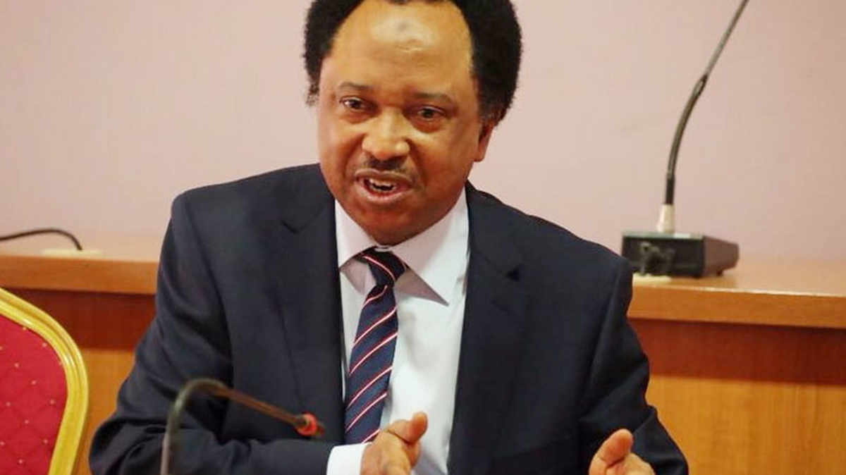 Shehu Sani Mocks FG Poverty Alleviation Scheme