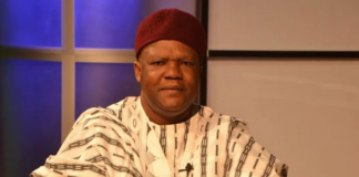 Students Abduction: Army Making Reassuring Noises, Says Mailafia