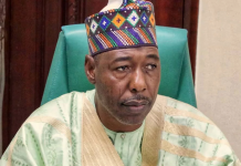 Zulum: Let's Battle Boko Haram With Mercenaries