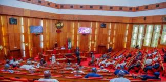 2021 Budget Passes Second Reading At Senate