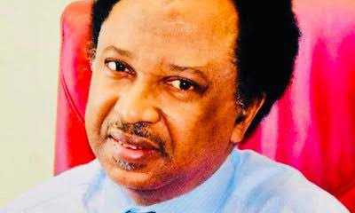 Whoever carted away the staff of the Oba and his shoe should please return it. — Shedu Sani pleads