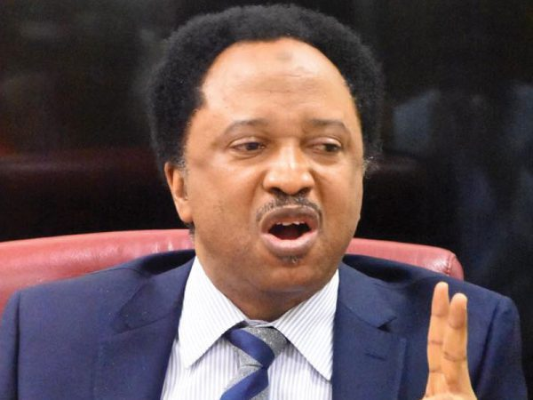 Shehu Sani Slams NBC Over Suspension Of Channels TV